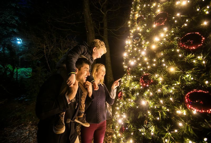 Celtic influences on Christmas traditions and roots